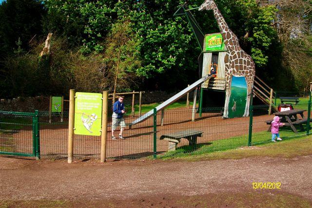 Fota wildlife park Playground surface