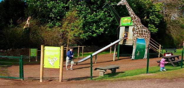 Fota Wildlife Playground