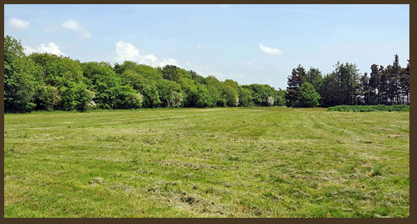 green fields site for allotments in Ballincollig Cork